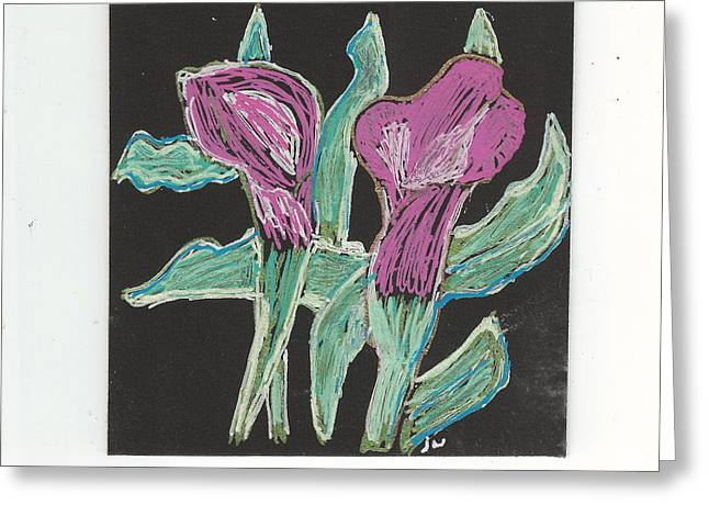 Calla Lily Drawings Greeting Cards - Calla Lilies Greeting Card by Jennifer Woodworth