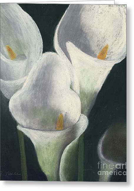 Calla Lily Pastels Greeting Cards - Calla Lilies Up Close Greeting Card by Ginny Neece