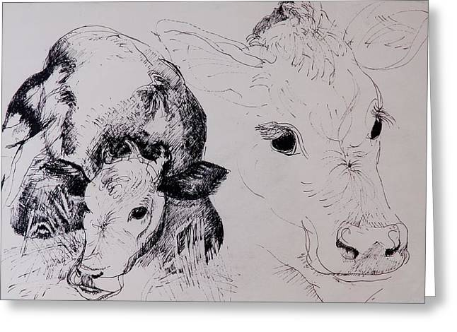 Calf Photographs Greeting Cards - Calves, Gt Garnetts Ii Pen & Ink On Paper Greeting Card by Brenda Brin Booker