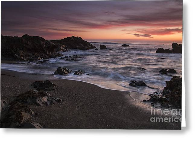 Cambria Greeting Cards - Cambria sunset Greeting Card by Jose M Beltran