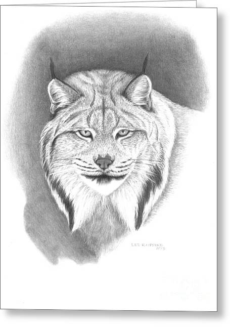 Wildlife Pictures Greeting Cards - Canada Lynx Greeting Card by Lee Updike