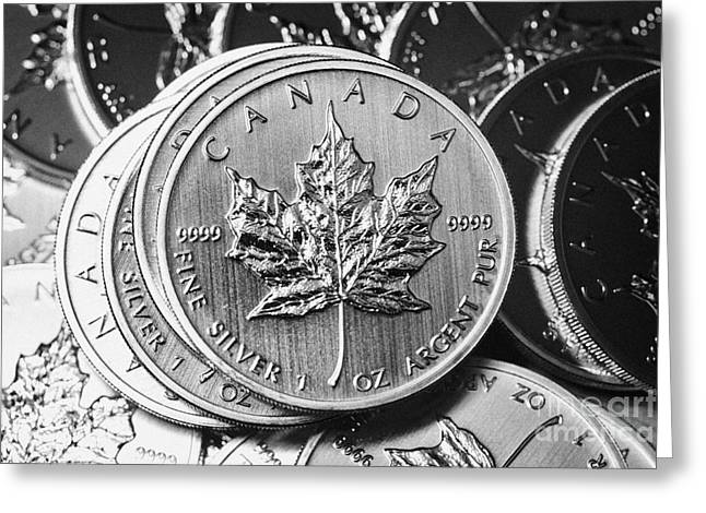 Argent Greeting Cards - Canadian One Ounce Maple Leaf Silver Coins Greeting Card by Joe Fox