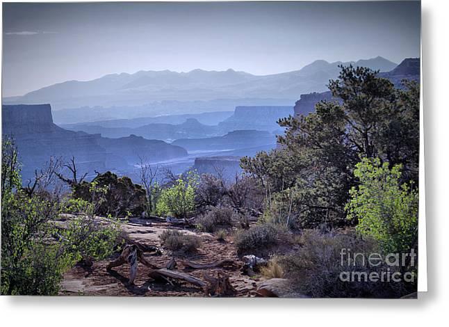 Landscapes Ceramics Greeting Cards - Canyon Silhouettes Greeting Card by Nena Trapp