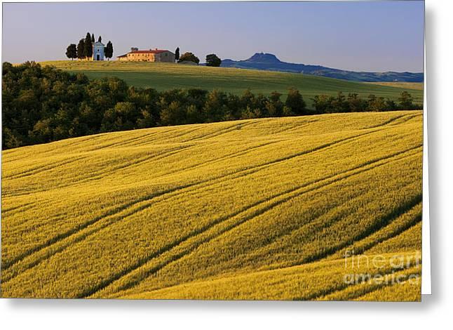 Tuscan Hills Greeting Cards - Cappella di Vitaleta Greeting Card by Brian Jannsen