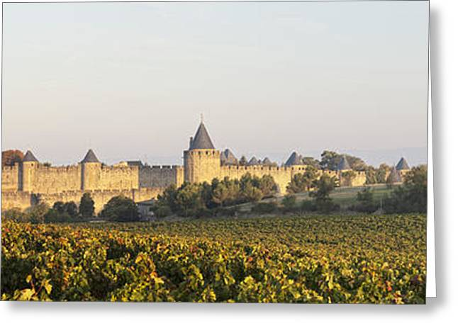Chateau Greeting Cards - Carcassonne Languedoc Roussillon France Greeting Card by Colin and Linda McKie