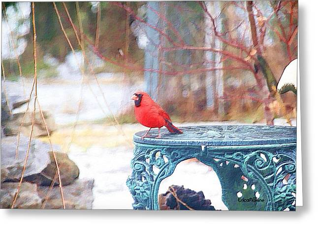 """photo Manipulation"" Paintings Greeting Cards - Cardinal Greeting Card by EricaMaxine  Price"