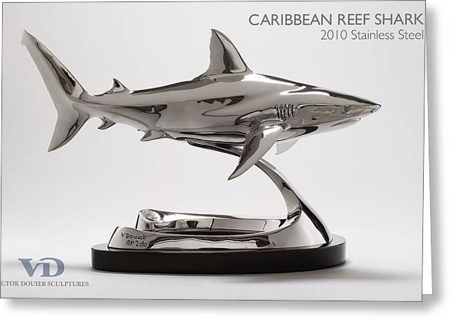 Sharks Sculptures Greeting Cards - Caribbean reef shark Greeting Card by Victor Douieb