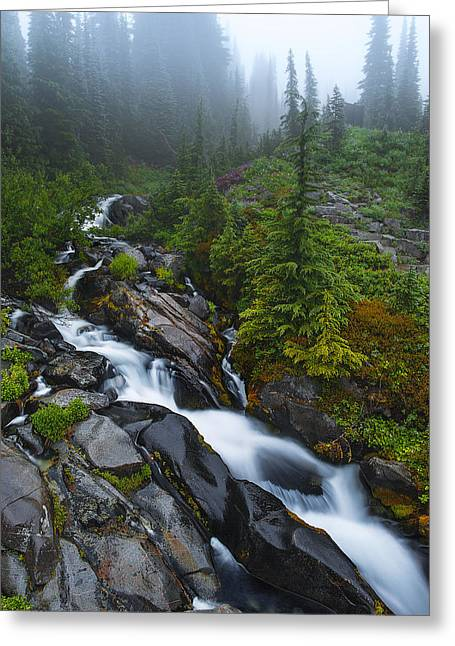 Mazama Greeting Cards - Carvings of Nature Greeting Card by Ryan Manuel