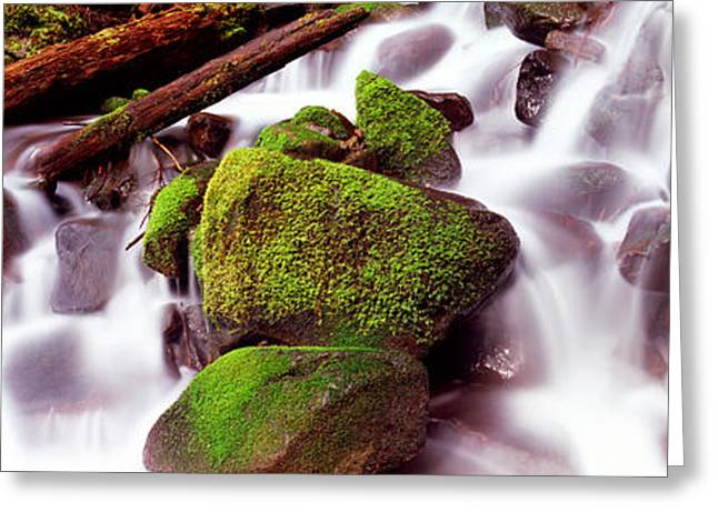 Moss Greeting Cards - Cascading Waterfall In A Rainforest Greeting Card by Panoramic Images