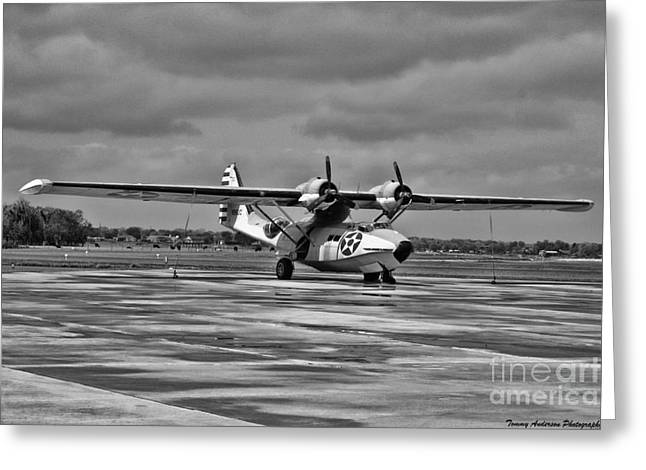Pby Catalina Greeting Cards - Catalina Greeting Card by Tommy Anderson