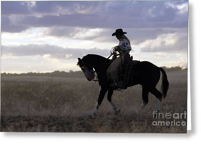 Quarter Horse Greeting Cards - Cattleman With Paint Horse Greeting Card by M. Watson
