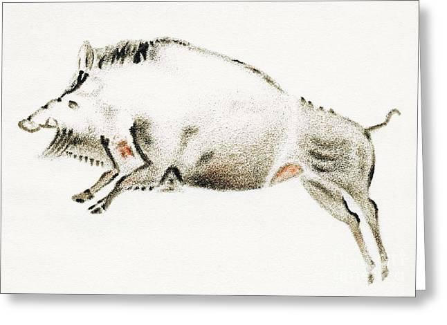 Hematite Greeting Cards - Cave Painting Of A Boar, Artwork Greeting Card by Sheila Terry