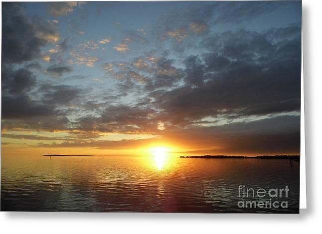 Cedar Key Greeting Cards - Amazing Cedar Key Sunset Greeting Card by D Hackett