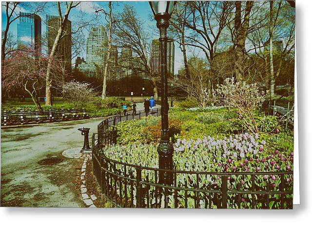 Central Park Photo Greeting Cards - Central Park NYC in Spring Greeting Card by Mountain Dreams