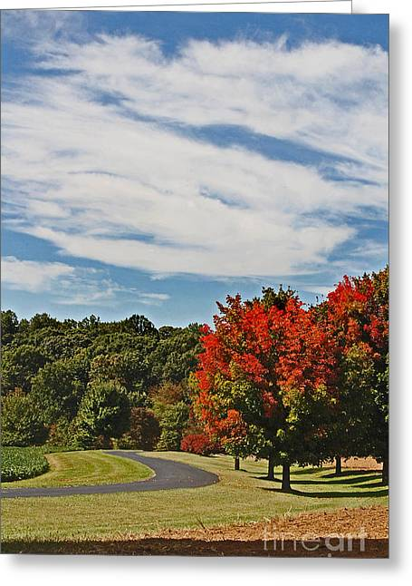 Photos Of Autumn Greeting Cards - Changing Seasons Greeting Card by Skip Willits