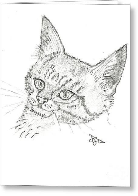 John Williams Drawings Greeting Cards - Charlie the Cat Greeting Card by John Williams
