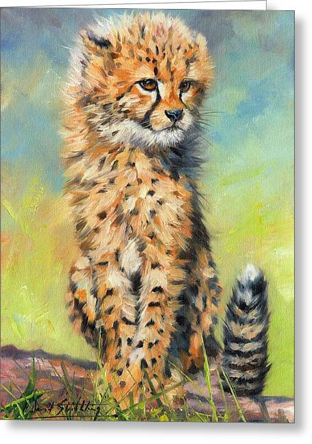 Kitten Prints Greeting Cards - Cheetah Cub Greeting Card by David Stribbling