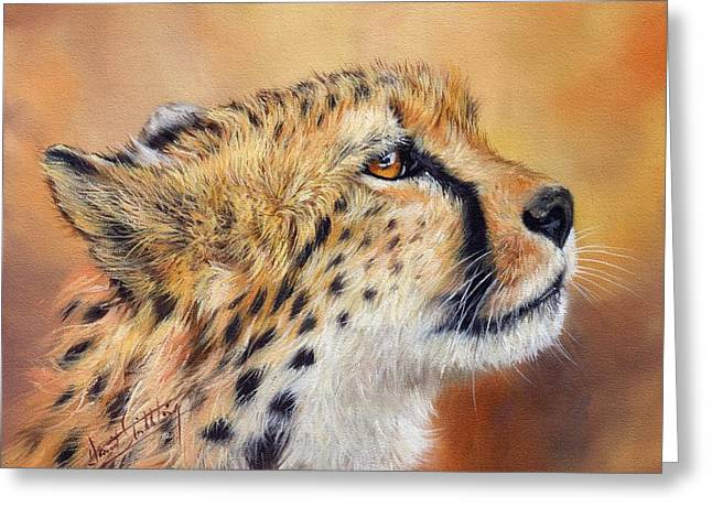 Cat Prints Greeting Cards - Cheetah Greeting Card by David Stribbling