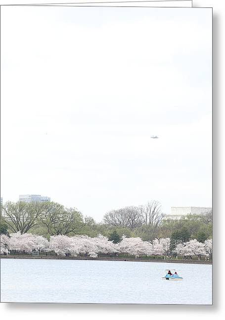 Cherry Greeting Cards - Cherry Blossoms - Washington DC - 011320 Greeting Card by DC Photographer