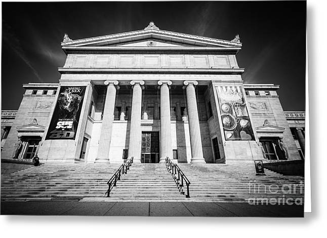 Editorial Greeting Cards - Chicago Field Museum in Black and White Greeting Card by Paul Velgos