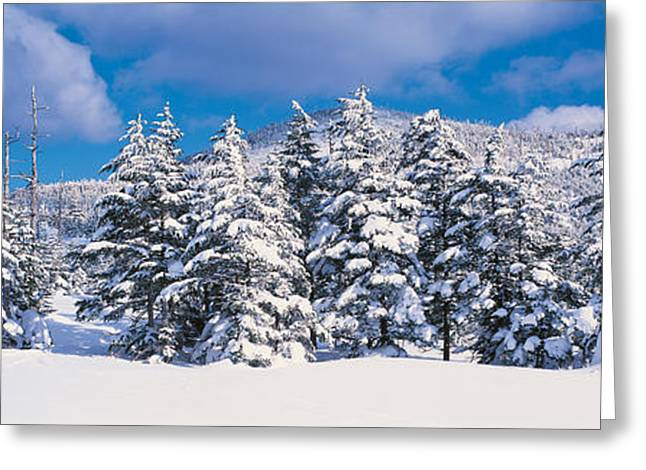 Snow Drifts Greeting Cards - Chino Nagano Japan Greeting Card by Panoramic Images