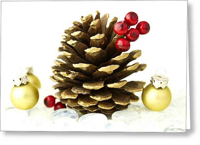 Pine Cones Photographs Greeting Cards - Christmas Greeting Card by Blink Images