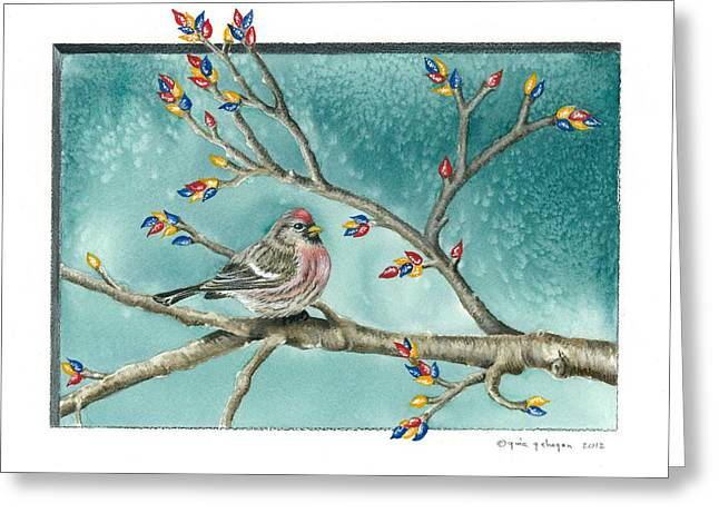 Christmas Redpoll Greeting Card by Gina Gahagan