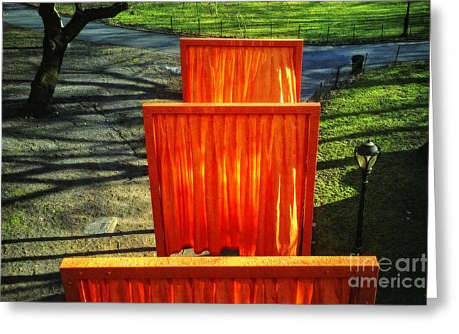 Installation Art Greeting Cards - Christo - The Gates - Project for Central Park Greeting Card by Nishanth Gopinathan