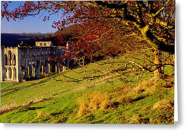 Colors Of Autumn Greeting Cards - Church On A Landscape, Rievaulx Abbey Greeting Card by Panoramic Images
