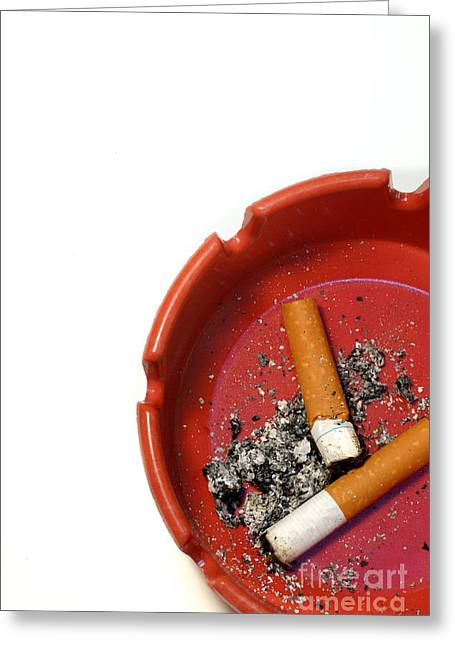 Butt Greeting Cards - Cigarette Butts Greeting Card by Amy Cicconi