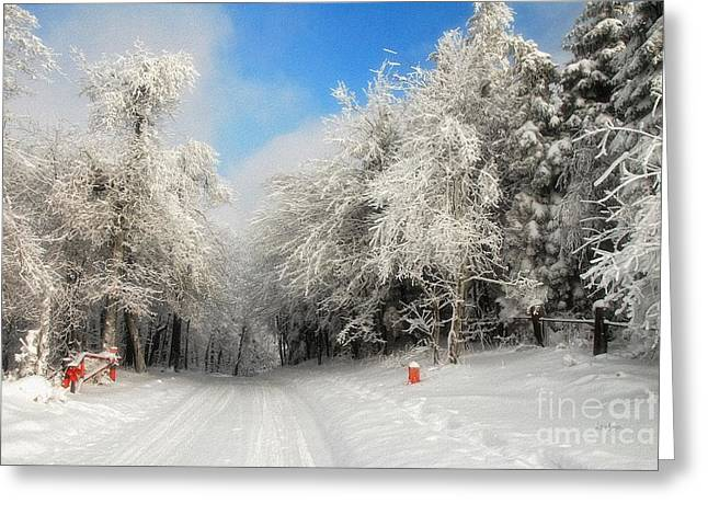 Winter Roads Digital Art Greeting Cards - Clearing Skies Greeting Card by Lois Bryan