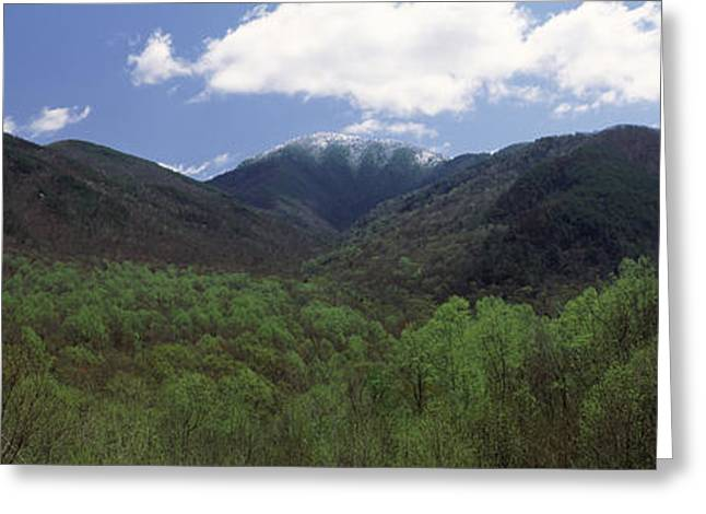 Mountain Greeting Cards - Clouds Over Mountains, Great Smoky Greeting Card by Panoramic Images