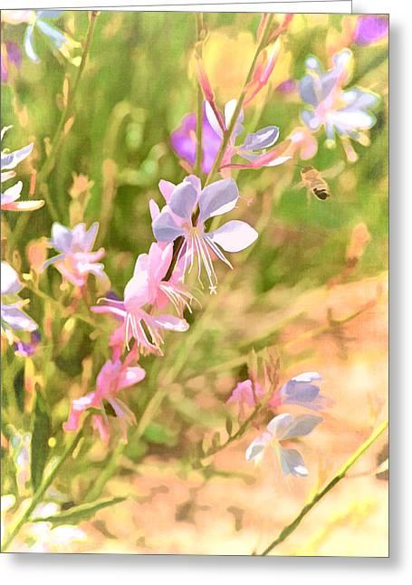 Pamela Cooper Greeting Cards - Color 149 Greeting Card by Pamela Cooper