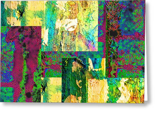 Paint Photograph Greeting Cards - Color Greeting Card by Nancy Merkle