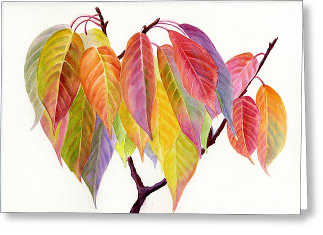 Yellow Leaves Paintings Greeting Cards - Colorful Fall Leaves Greeting Card by Sharon Freeman