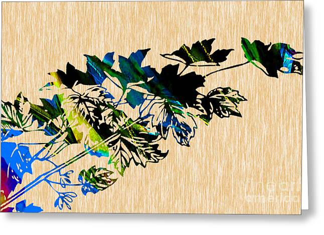 Autumn Photographs Mixed Media Greeting Cards - Colorful Leaves Greeting Card by Marvin Blaine