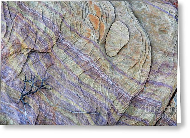 Layers Greeting Cards - Colorful Textured Sandstone Rock - Valley Of Fire Greeting Card by Gary Whitton