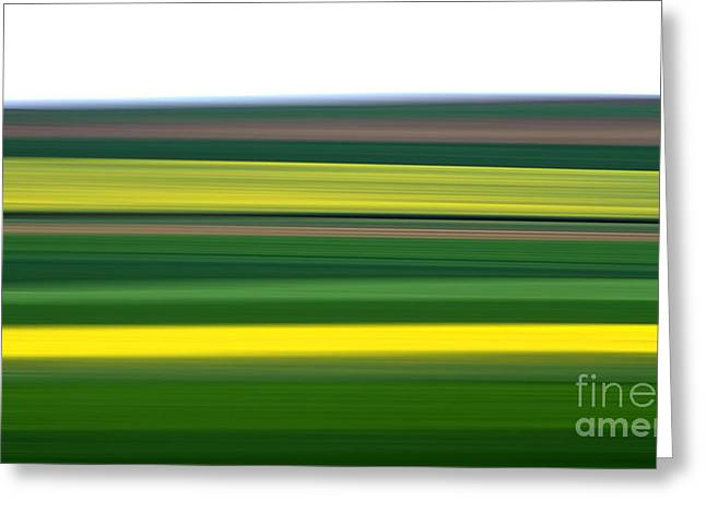 Cropland Greeting Cards - Colourful landscape Greeting Card by Bernard Jaubert