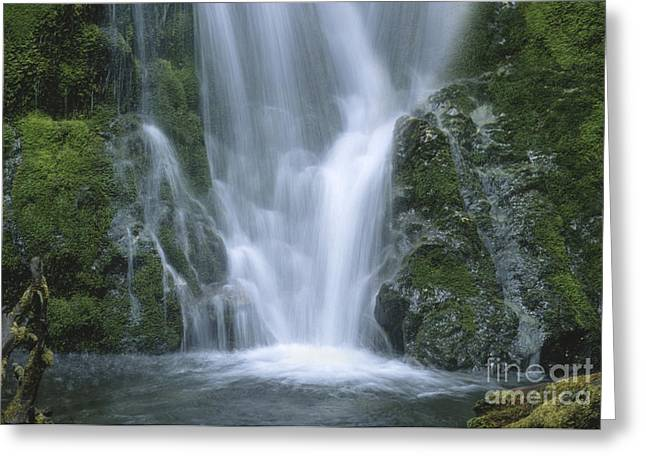 Landscape Photograpy Greeting Cards - Coming Together Greeting Card by Sandra Bronstein