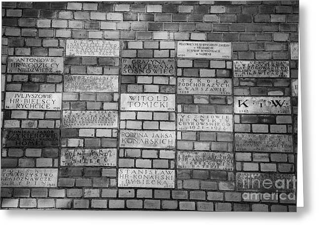 Sponsor Greeting Cards - Commemorative Sponsor Plaques Buried In The Wall Of Wawel Castle Krakow Greeting Card by Joe Fox