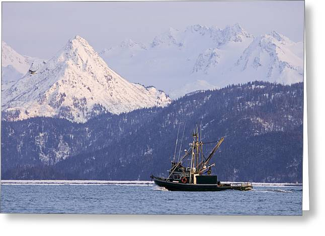 Wintry Greeting Cards - Commercial Fishing Boat In Kachemak Bay Greeting Card by Scott Dickerson