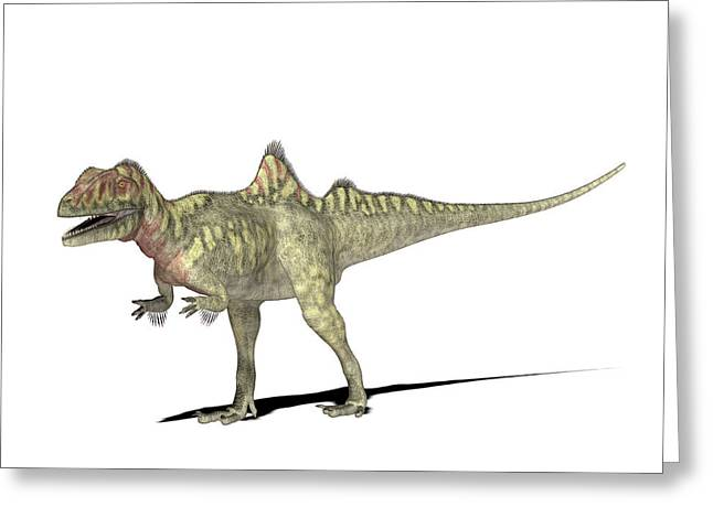 Concavenator Dinosaur Greeting Card by Friedrich Saurer