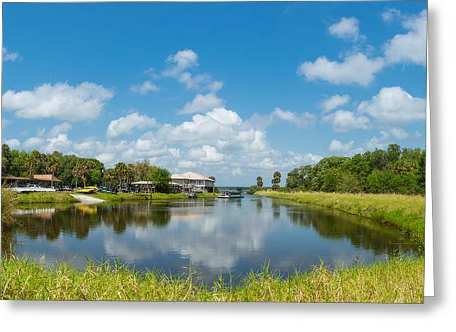 Reflections In River Greeting Cards - Concession Area In Myakka River State Greeting Card by Panoramic Images