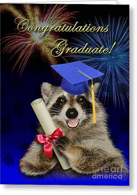 Wildlife Celebration Greeting Cards - Congratulations Graduate Raccoon Greeting Card by Jeanette K
