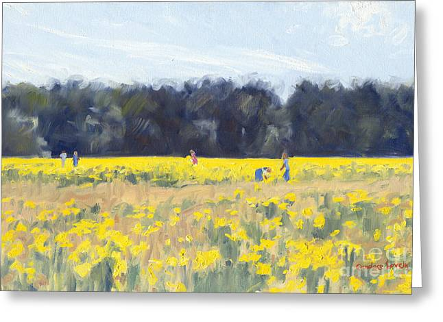 Head Stand Paintings Greeting Cards - Connors Daffodil field Greeting Card by Candace Lovely