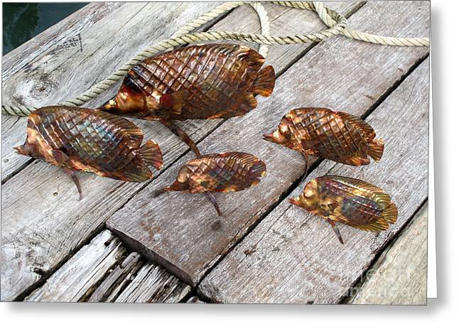 Coral Sculptures Greeting Cards - A Group of Laticed Butterfly Fish Greeting Card by Shane Bower