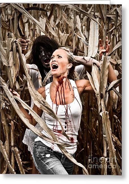 Evil House Greeting Cards - Corn Field Horror Greeting Card by Jt PhotoDesign
