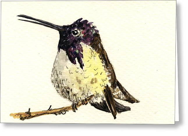 Costa Paintings Greeting Cards - Costa s hummingbird Greeting Card by Juan  Bosco