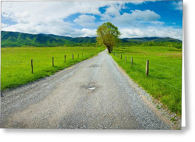 Smoky Greeting Cards - Country Gravel Road Passing Greeting Card by Panoramic Images