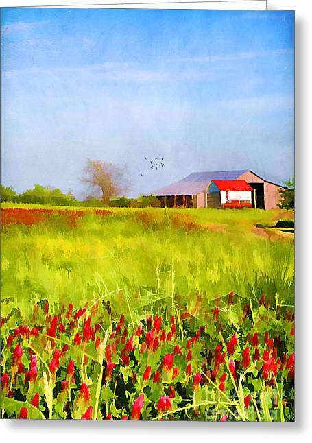 Country Kind Of Spring Greeting Card by Darren Fisher